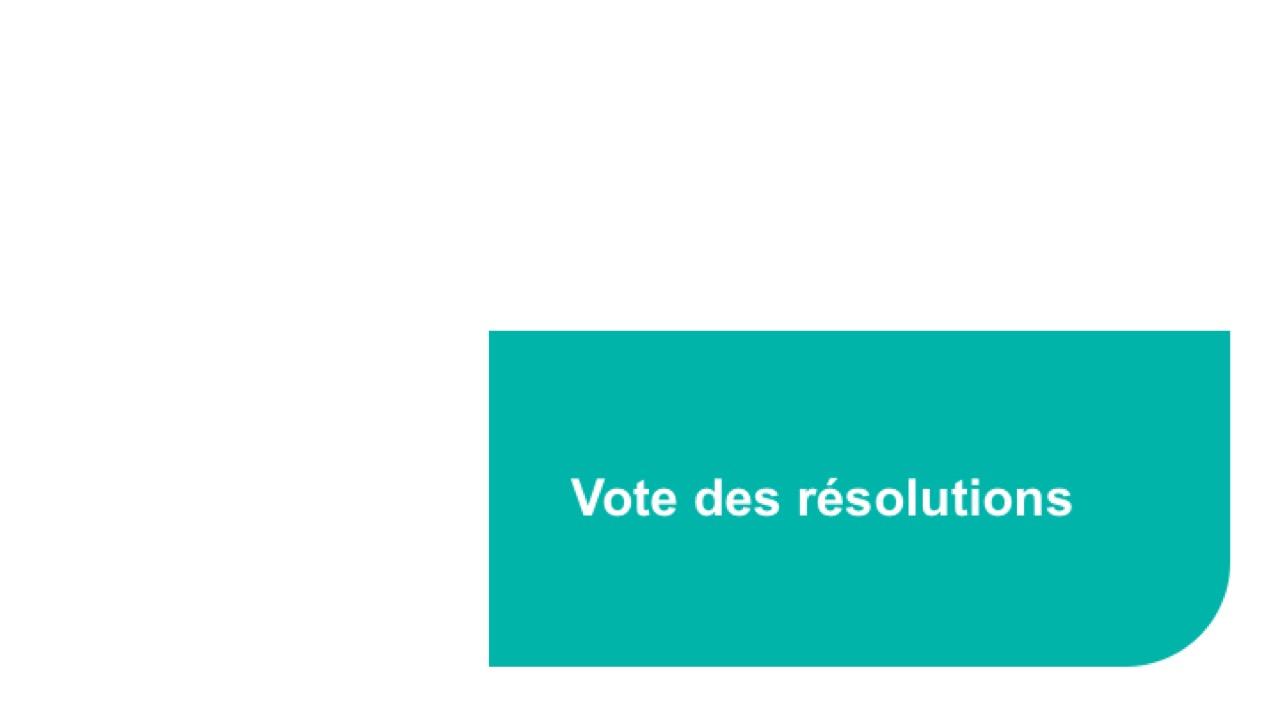 Vote des résolutions (2)